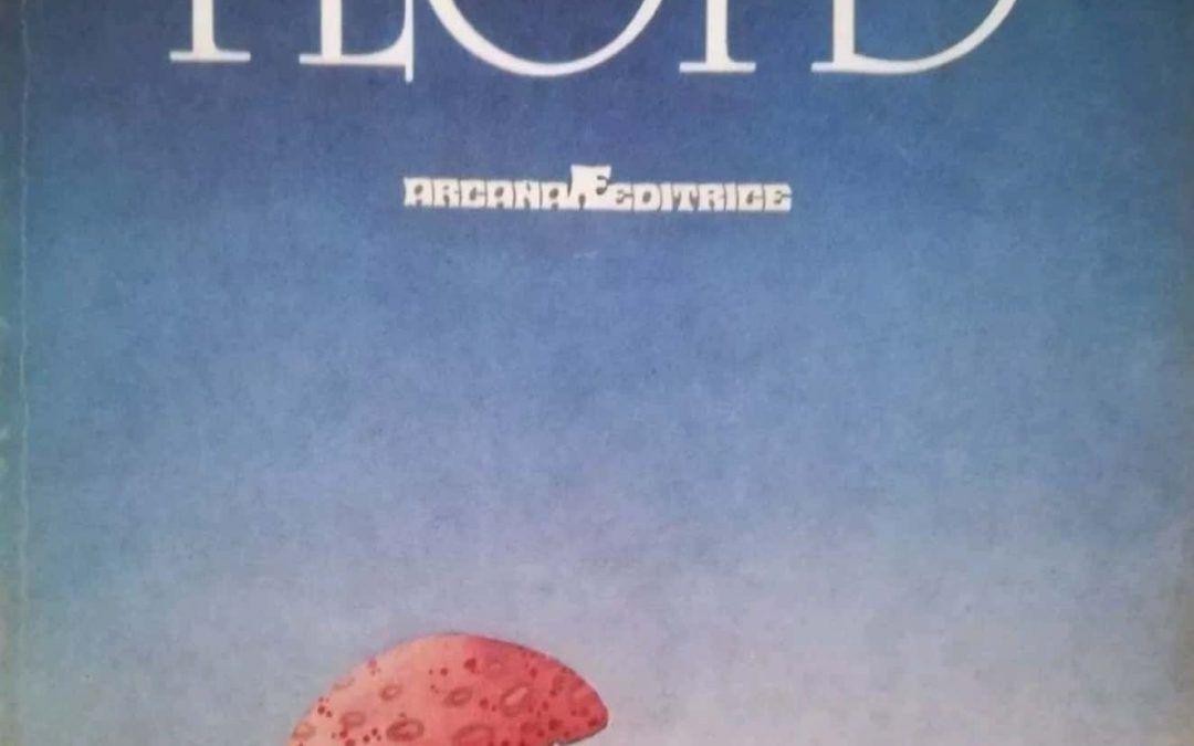…su eBay c'è il primo libro sui Pink Floyd pubblicato in Italia