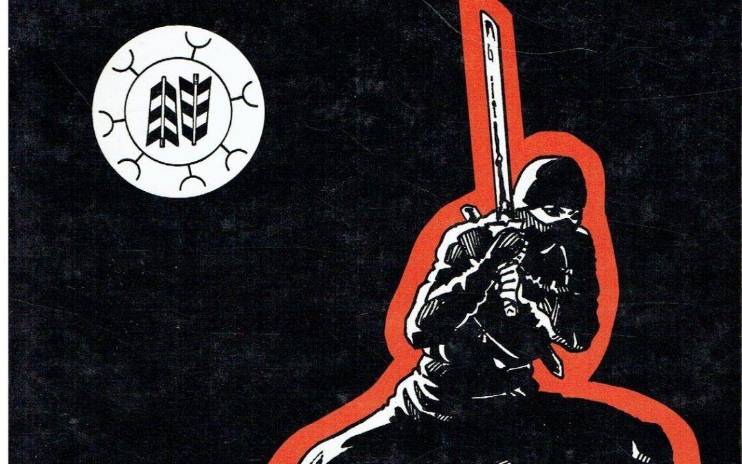 …su eBay ci sono copie del raro libro sui Ninja di Bruno Abietti