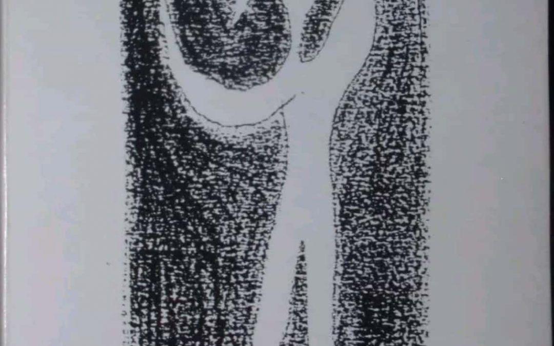 """…su eBay c'è """"Il cielo e il resto"""", opera prima di Sandro Veronesi"""