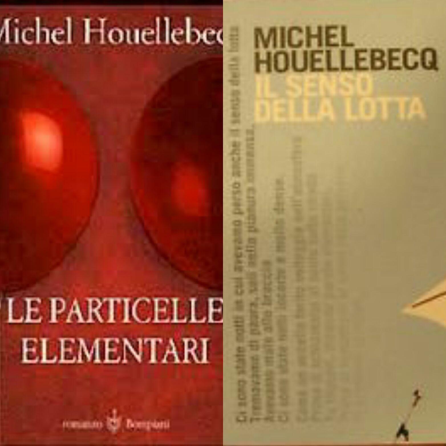 """""""Le particelle elementari"""" e """"Il senso della lotta"""", quando Houellebecq non era ancora famoso"""