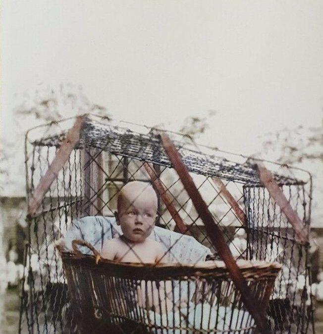 """Zoo"" di Isabella Santacroce in bancarella a Porta Portese"