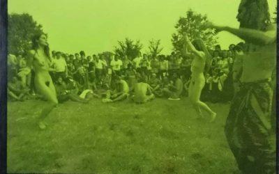 """""""La festa del Parco Lambro"""" di Franco Ortolani: un'icona Beat in asta su eBay"""