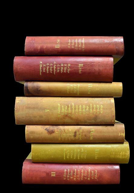 Occasioni sotto costo: come spendere sotto i 30 € per libri interessanti