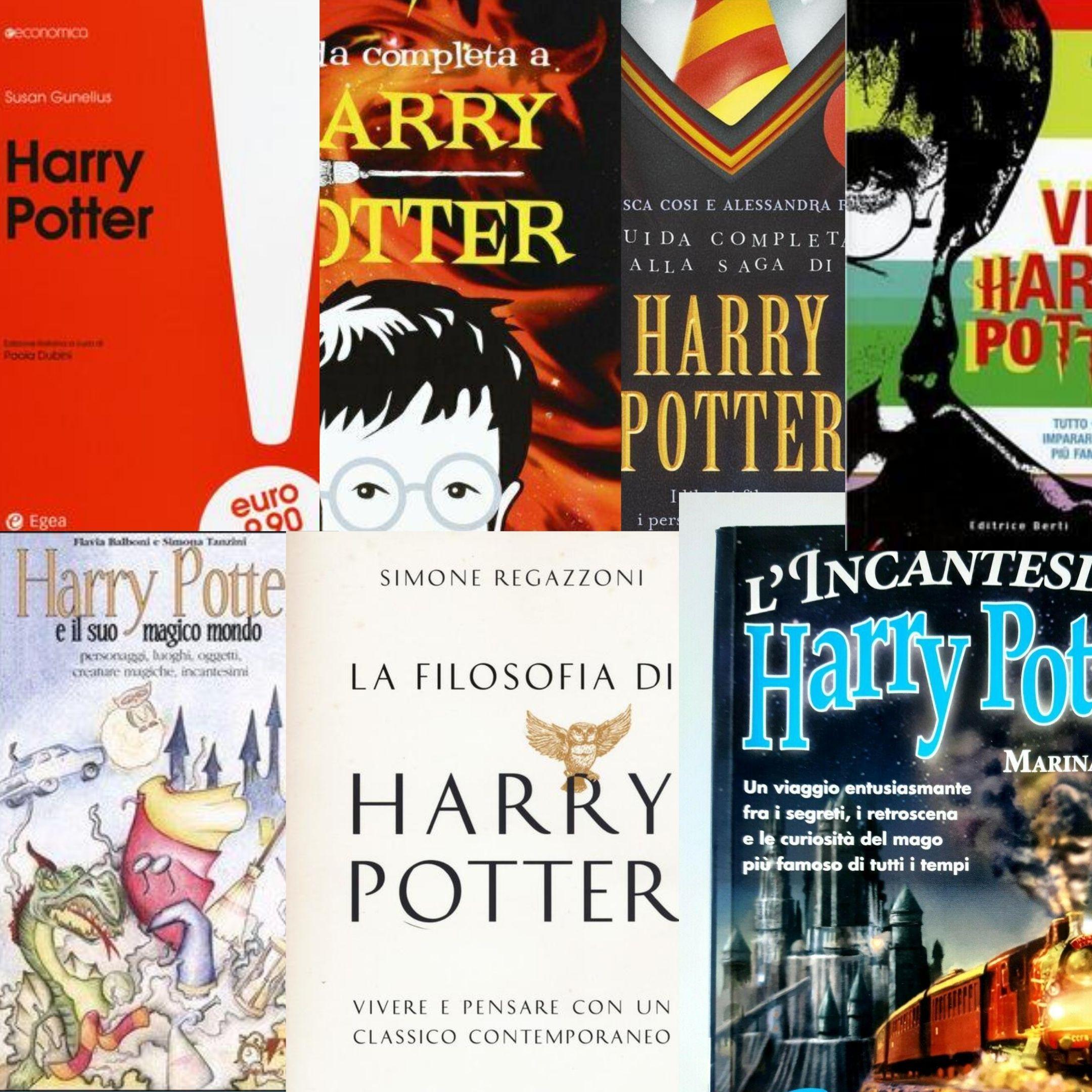 """Su IBS 7 libri per chi volesse entrare """"per la prima volta"""" nel mondo di Harry Potter"""