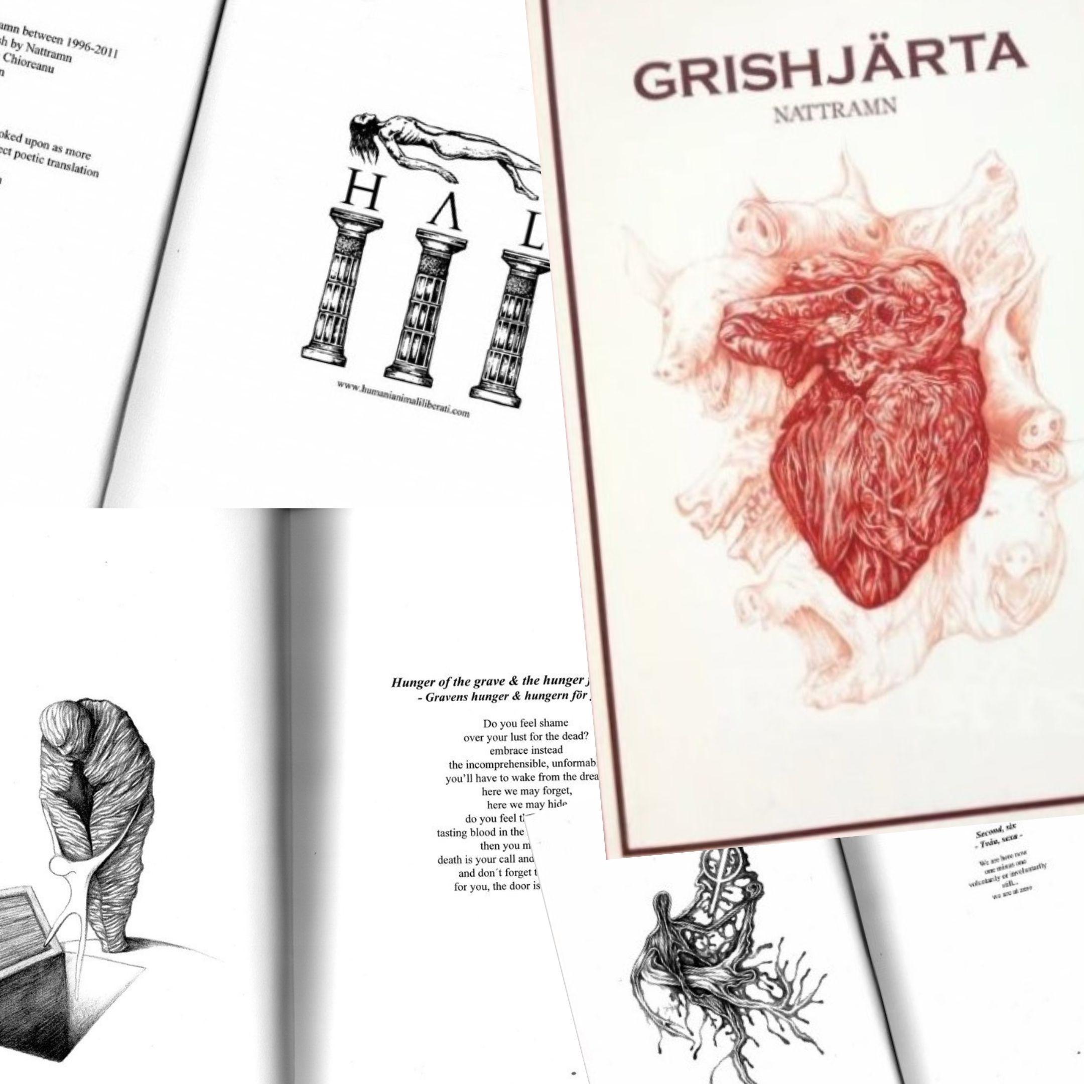 """""""Grishjärta"""" di Nattramn: il libro cult del Depressive Black Metal"""