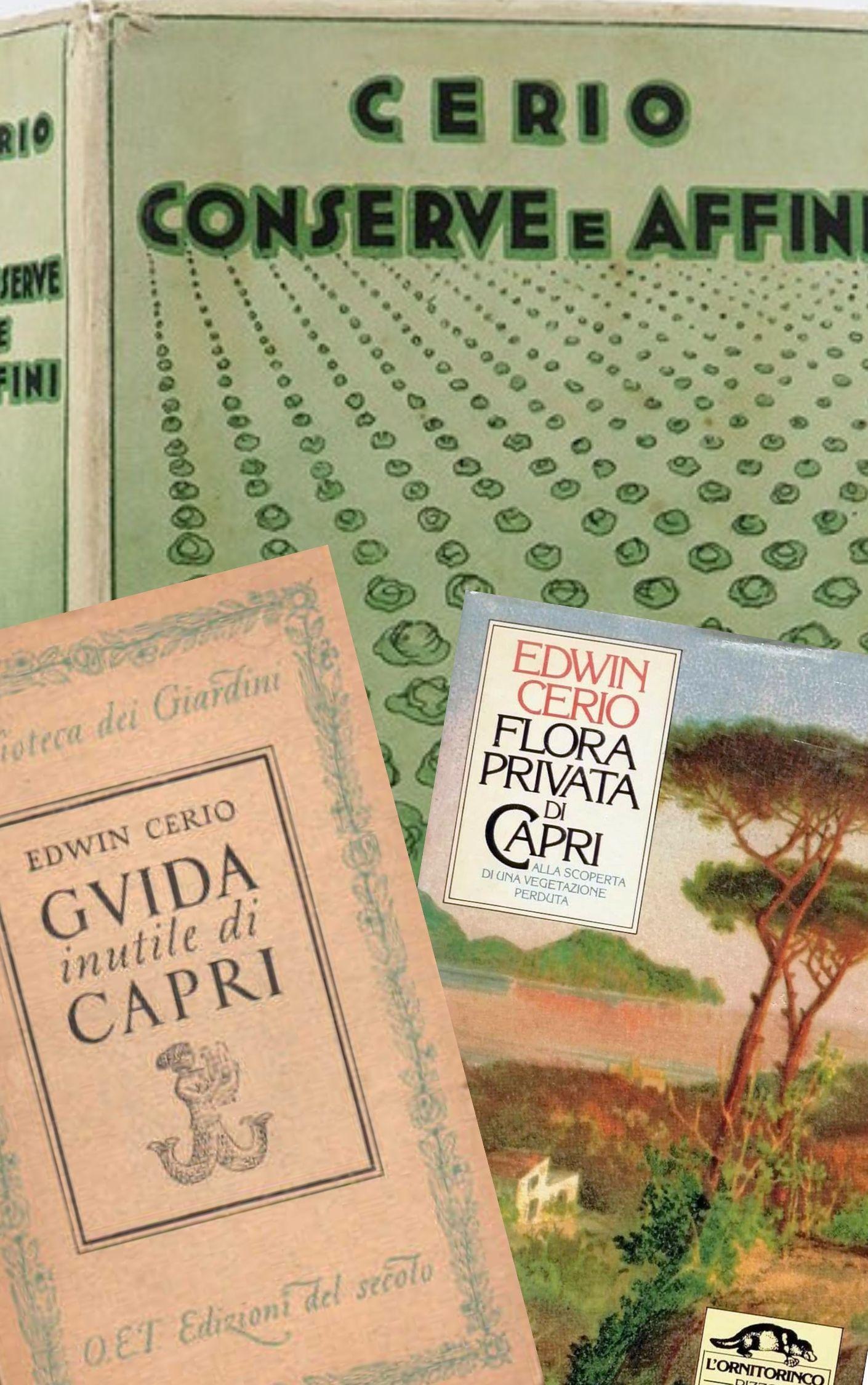 Alla scoperta di Edwin Cerio, botanico, ingegnere navale, futurista: con in mente solo Capri