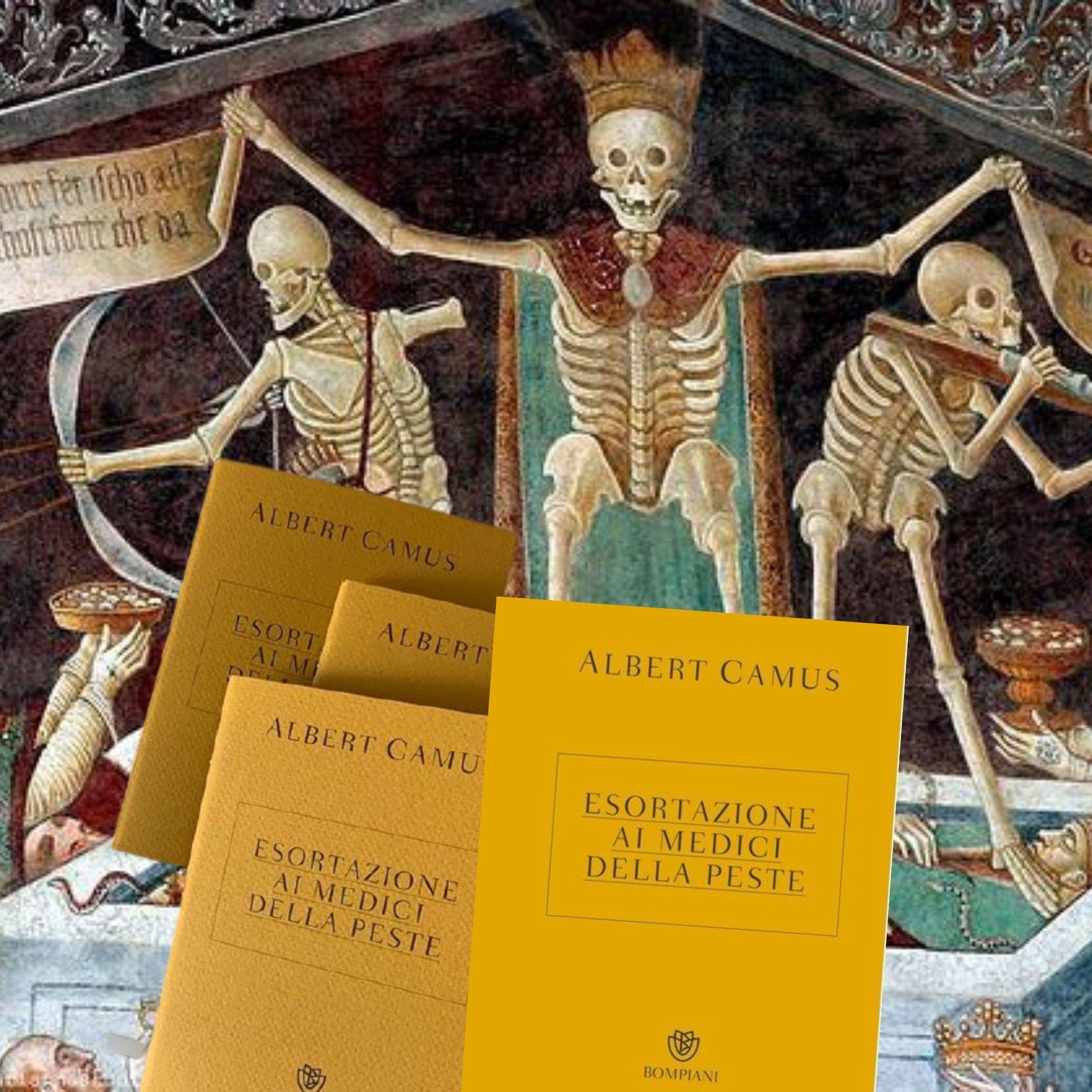 """""""Esortazione ai medici della peste"""" di Albert Camus: sparito!"""