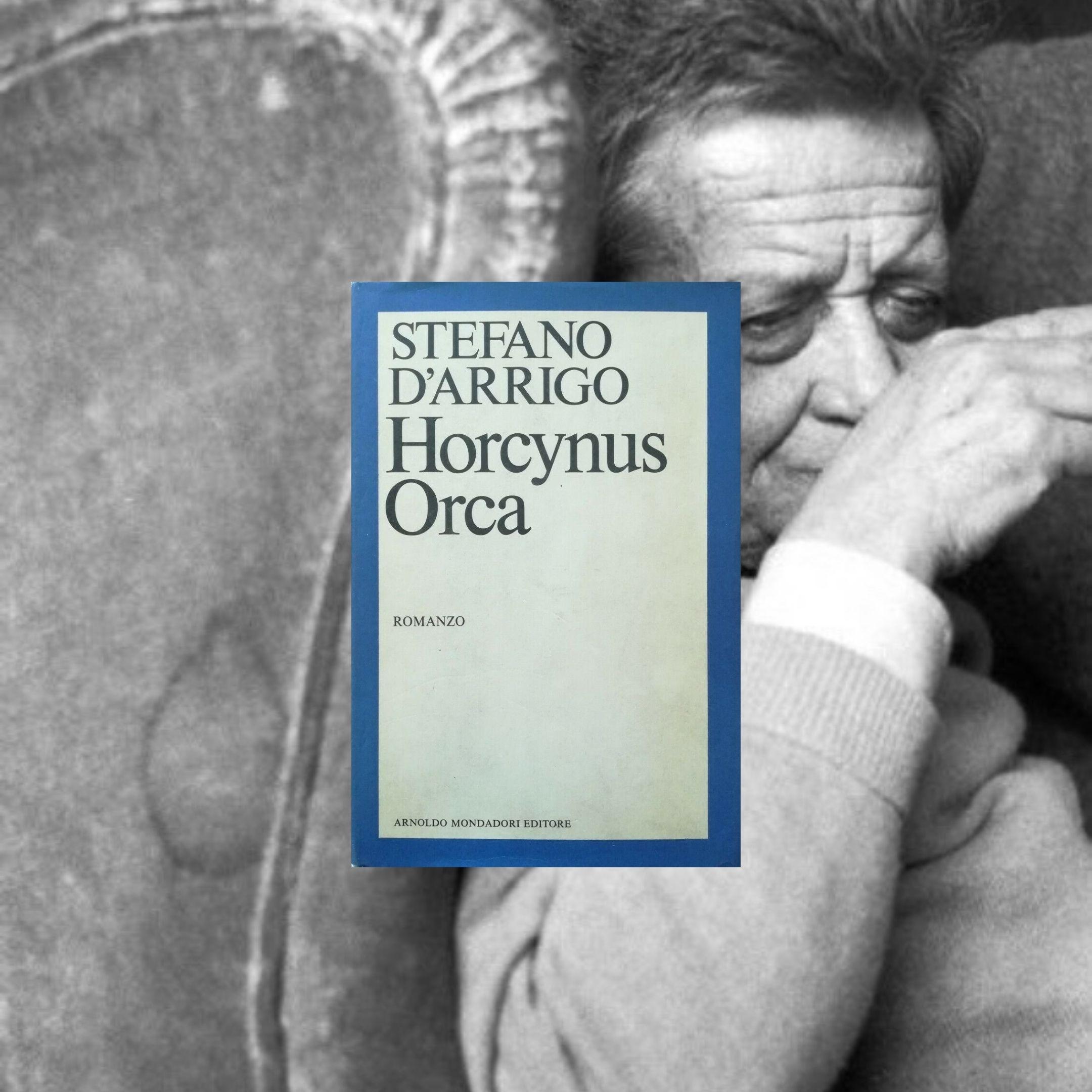 """""""Horcynus Orca"""" di Stefano D'Arrigo (Mondadori, 1975): quando le condizioni del volume sono fondamentali"""