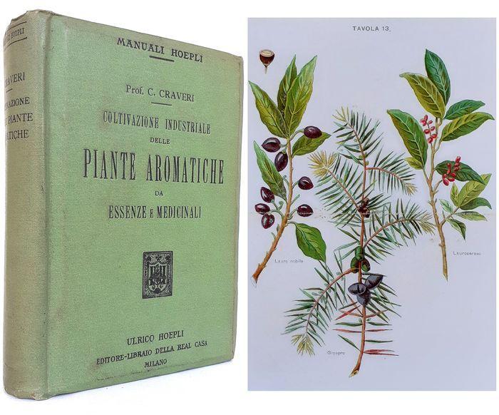 In asta sottoprezzo l'ambitissimo manuale di Calisto Craveri: Coltivazione Industriale delle Piante Aromatiche (1914)