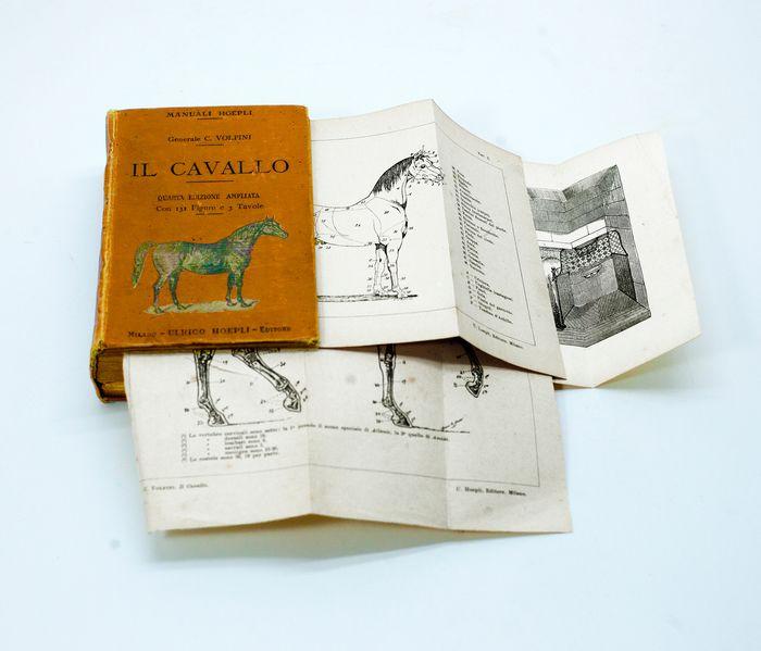 """""""Il cavallo"""" del generale Carlo Volpini (Hoepli, 1950) – in asta su Catawiki a 50 €"""