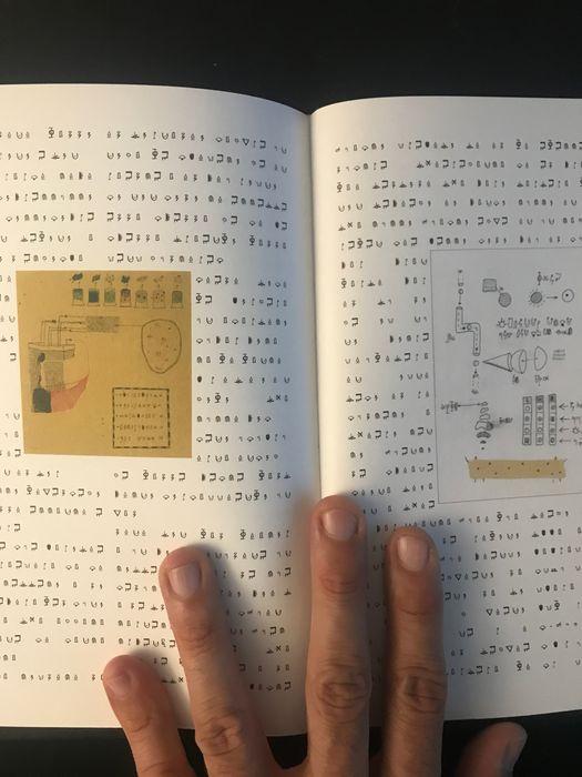 """Esistono solo 50 copie di questo """"Trattato di Microendobiologia"""" che ricorda il Manoscritto Voynich"""